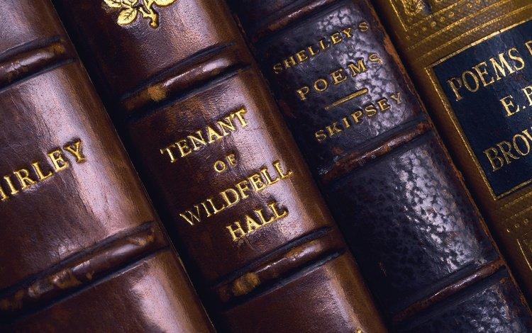 книги, книга, переплет, обложка, фолиант, books, book, cover, folio