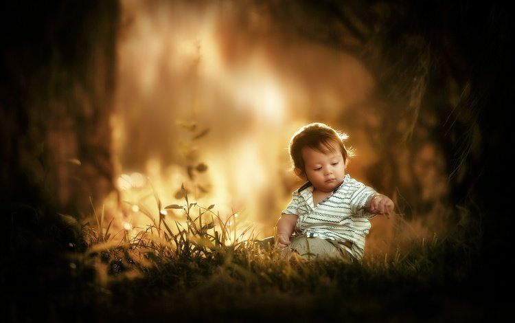 light, grass, nature, forest, children, the game, child, boy, baby