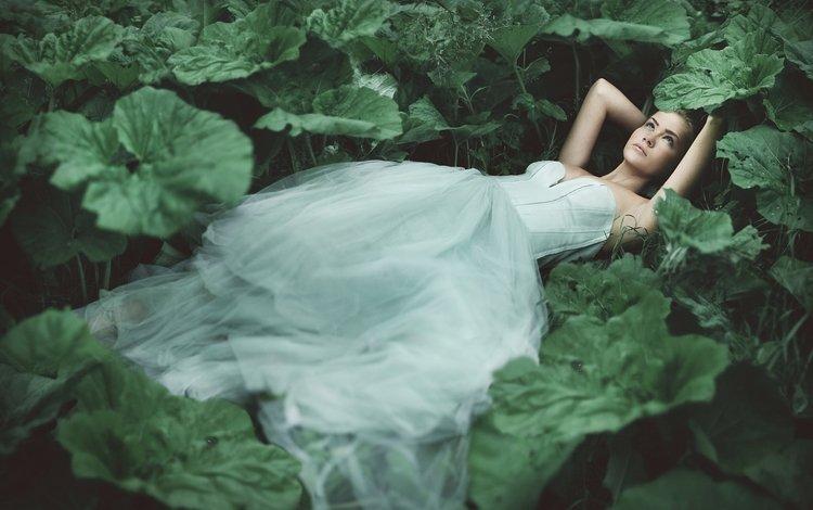 девушка, лопухи, взгляд, лежит, модель, лицо, растение, зеленые листья, белое платье, girl, mugs, look, lies, model, face, plant, green leaves, white dress