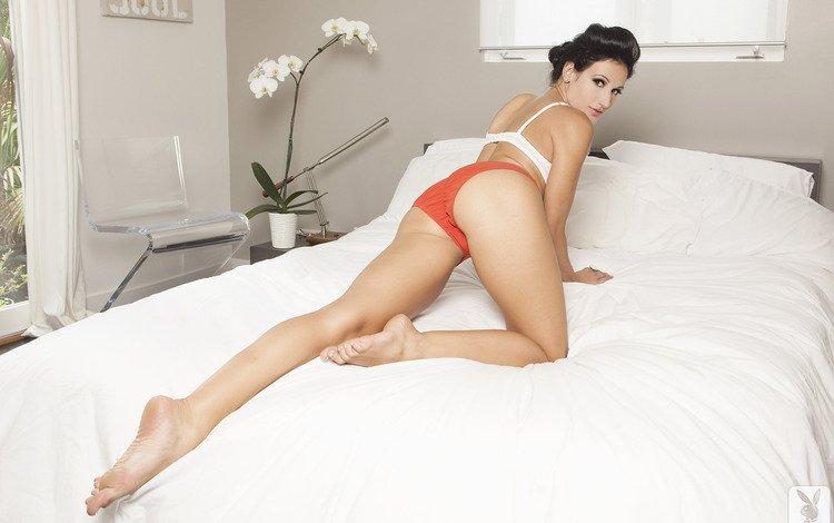 девушка, попа, трусики, модель, кровать, nicolette novak, girl, ass, panties, model, bed