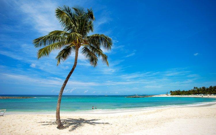 sea, beach, tropics, 25