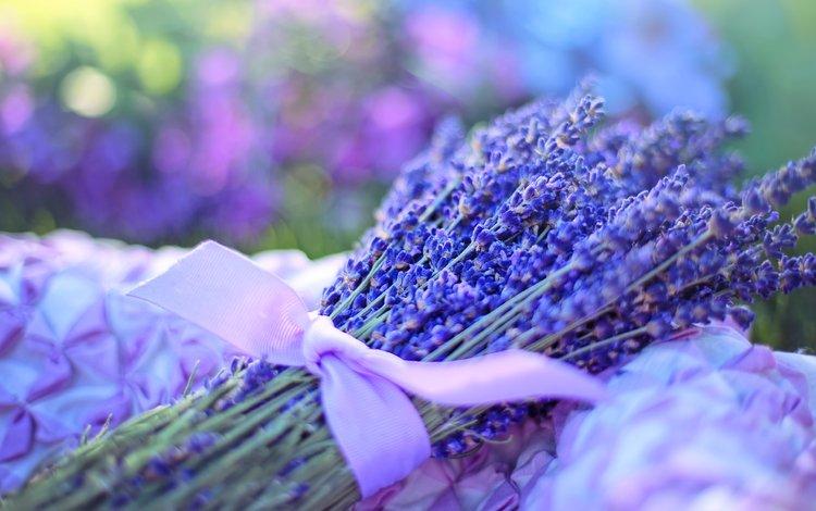 цветы, лаванда, букет, лента, flowers, lavender, bouquet, tape