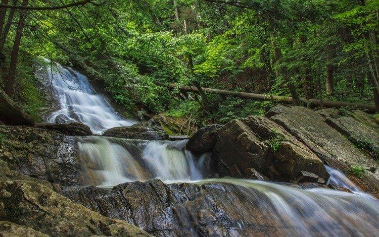 деревья, каскад, вода, река, природа, камни, лес, водопад, поток, trees, cascade, water, river, nature, stones, forest, waterfall, stream