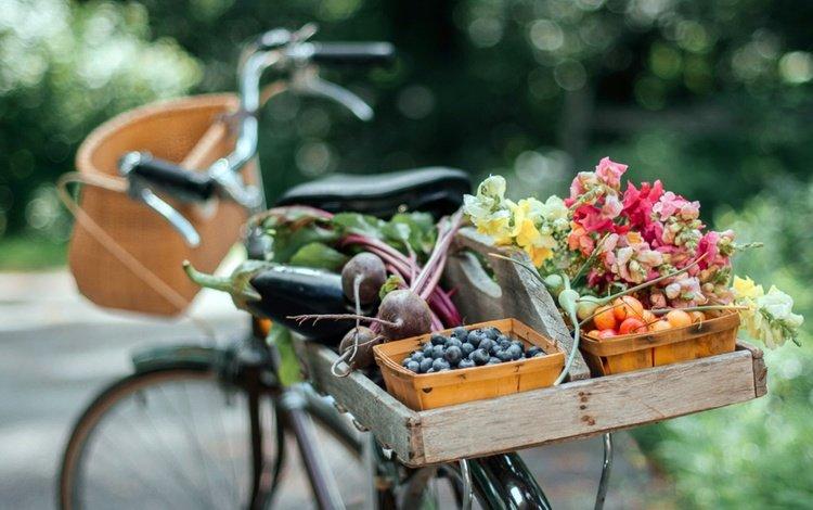 flowers, summer, fruit, vegetables, bike, bokeh
