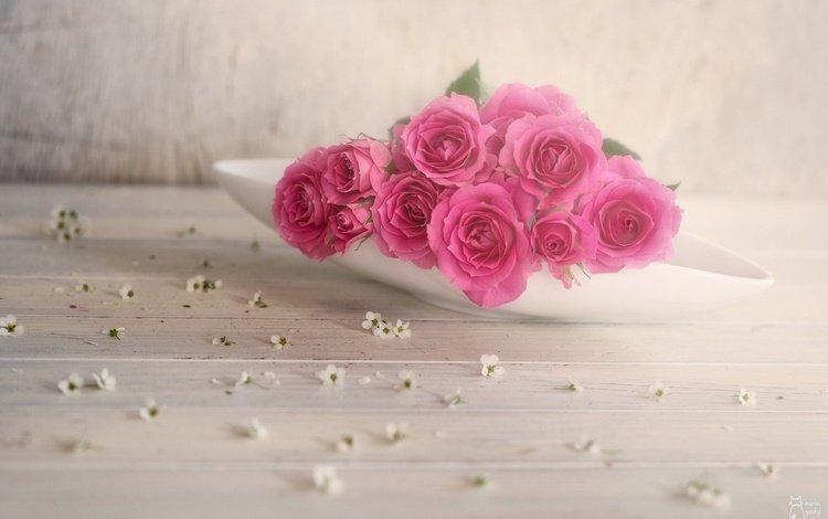 цветение, листья, роза, лепестки, бутон, flowering, leaves, rose, petals, bud