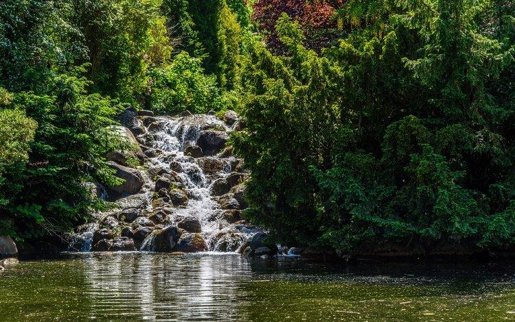 деревья, берлин, солнце, камни, зелень, парк, водопад, пруд, германия, trees, berlin, the sun, stones, greens, park, waterfall, pond, germany