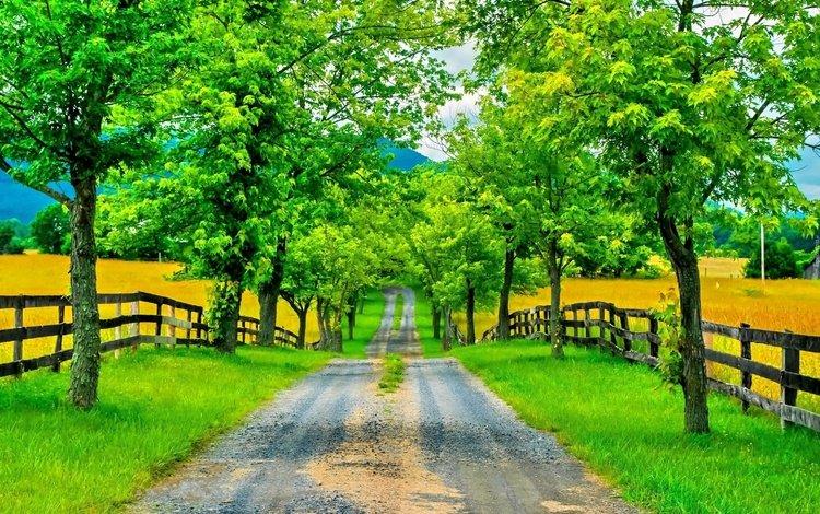 дорога, деревья, горы, зелень, забор, весна, road, trees, mountains, greens, the fence, spring