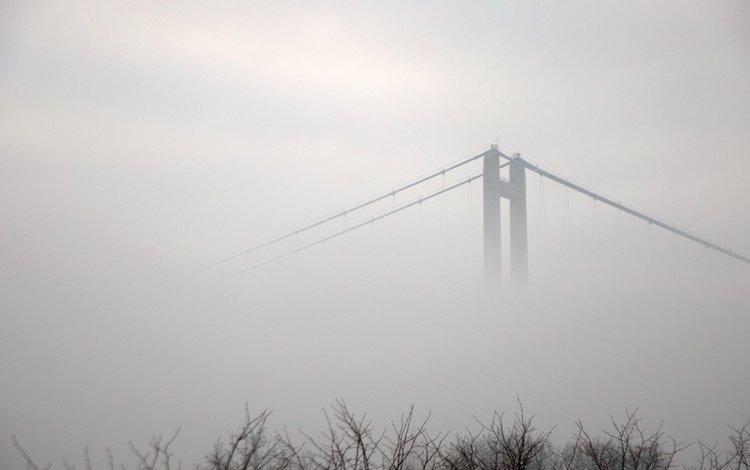 деревья, кингстон-апон-халл, река, туман, мост, город, чёрно-белое, англия, хамбер, trees, kingston upon hull, river, fog, bridge, the city, black and white, england, humber