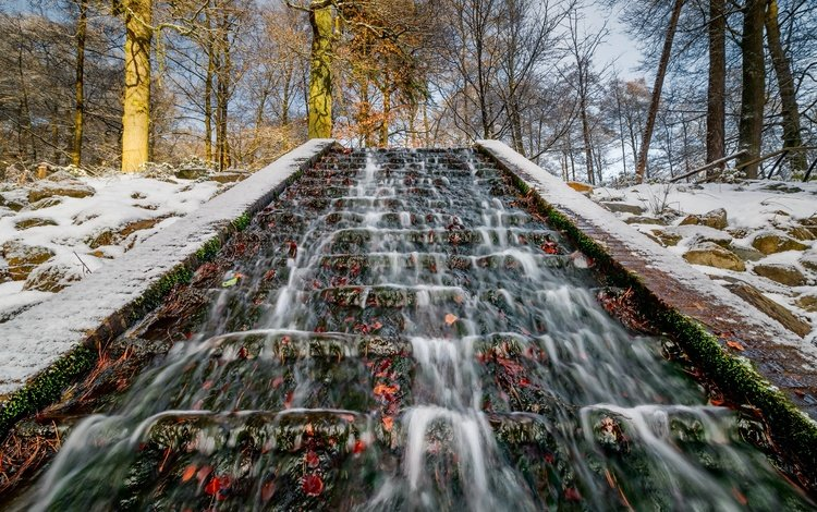 деревья, снег, парк, ручей, стволы, нидерланды, guelders, velp, trees, snow, park, stream, trunks, netherlands