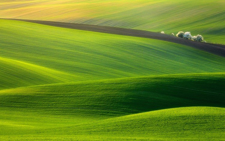 grass, hills, nature, landscape, field, meadow, czech republic