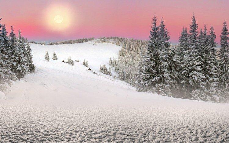 деревья, солнце, снег, природа, лес, зима, пейзаж, ели, trees, the sun, snow, nature, forest, winter, landscape, ate