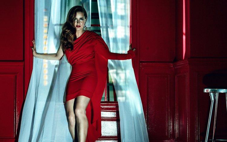 девушка, взгляд, модель, волосы, лицо, актриса, красное платье, эми адамс, girl, look, model, hair, face, actress, red dress, amy adams