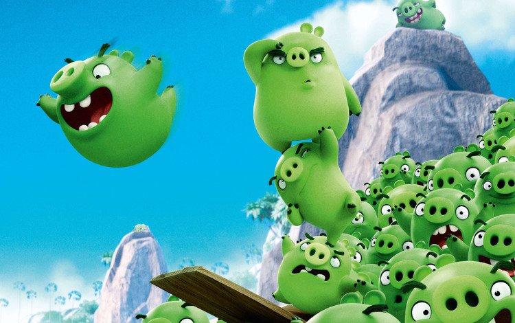 кино, rovio, animatem movie, кинотеатр, bad piggies, поросенок, кинопленка, грин, angry birds, rovio entertainment, дичь, animated film, montain, movie, cinema, pig, film, green, game