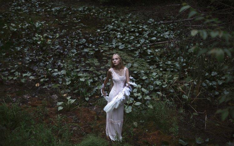 природа, aleah michele, swan lake, растения, девушка, взгляд, крылья, модель, лицо, белое платье, nature, plants, girl, look, wings, model, face, white dress