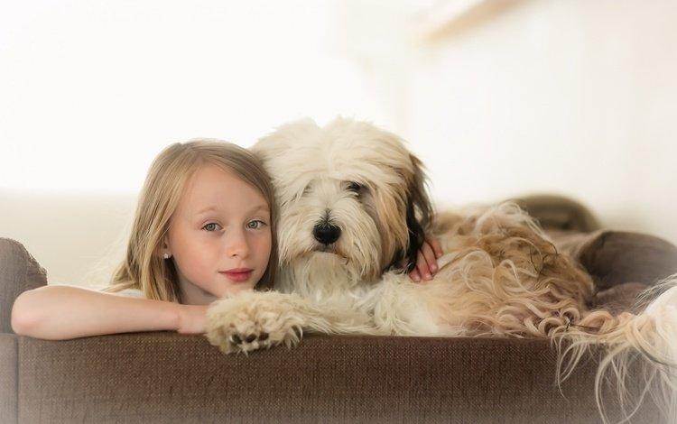 глаза, фон, взгляд, собака, дети, девочка, ребенок, друзья, eyes, background, look, dog, children, girl, child, friends