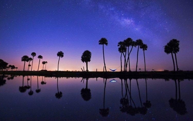 ночь, река, отражение, пальмы, сша, гамак, флорида, эконлокхатчи, night, river, reflection, palm trees, usa, hammock, fl, econlockhatchee