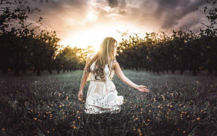 природа, девушка, блондинка, модель, волосы, полевые цветы, белое платье, nature, girl, blonde, model, hair, wildflowers, white dress