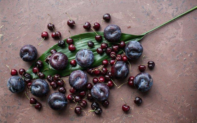 фрукты, лист, вишня, слива, fruit, sheet, cherry, drain
