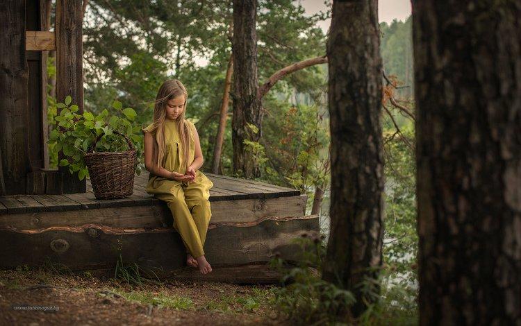 деревья, лес, взгляд, дети, девочка, корзина, ребенок, trees, forest, look, children, girl, basket, child