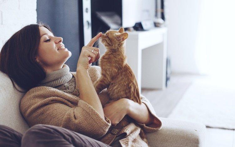 девушка, улыбка, палец, брюнетка, котенок, сидит, свитер, на диване, girl, smile, finger, brunette, kitty, sitting, sweater, on the couch