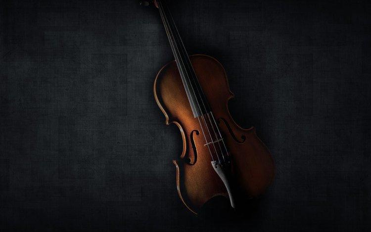 скрипка, струны, черный фон, музыкальный инструмент, violin, strings, black background, musical instrument