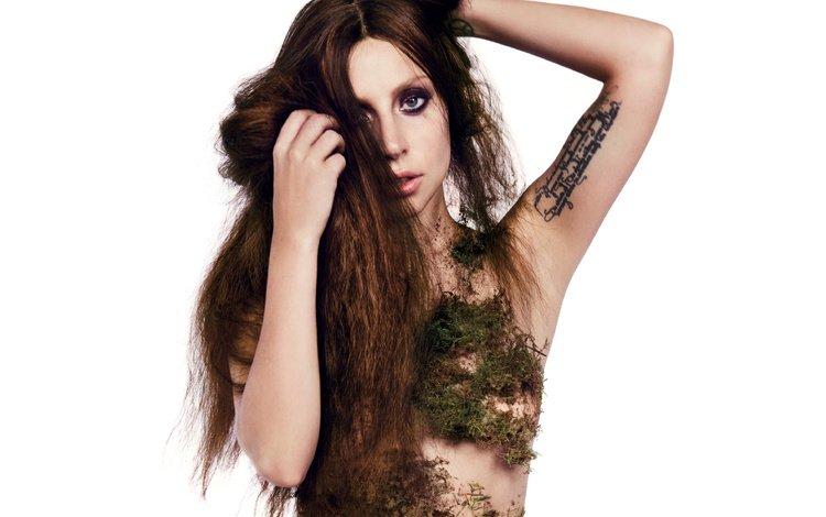 девушка, леди гага, взгляд, мох, волосы, лицо, певица, татуировка, знаменитость, girl, lady gaga, look, moss, hair, face, singer, tattoo, celebrity
