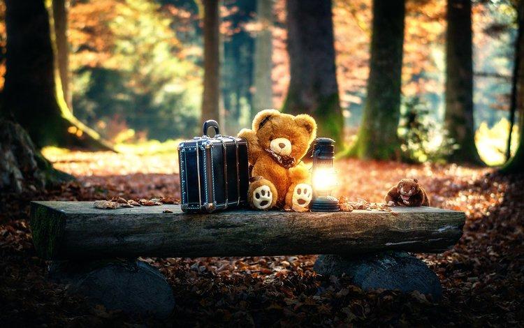 лес, мишка, игрушка, фонарь, чемодан, forest, bear, toy, lantern, suitcase
