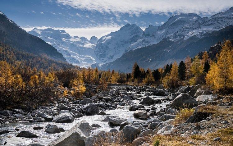 деревья, горы, снег, природа, лес, пейзаж, осень, trees, mountains, snow, nature, forest, landscape, autumn