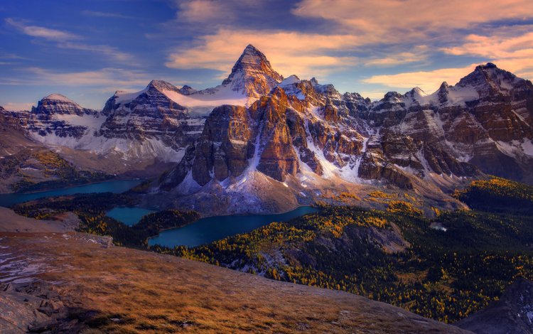 деревья, горы, лес, озёра, канада, trees, mountains, forest, lake, canada