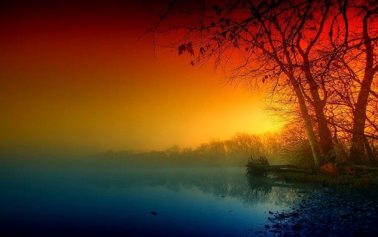 деревья, озеро, берег, туман, ветки, осень, дымка, trees, lake, shore, fog, branches, autumn, haze