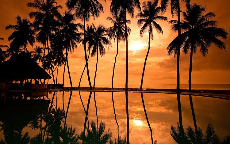 закат, отражение, побережье, пальмы, курорт, гавайи, палмы, sunset, reflection, coast, palm trees, resort, hawaii, palm