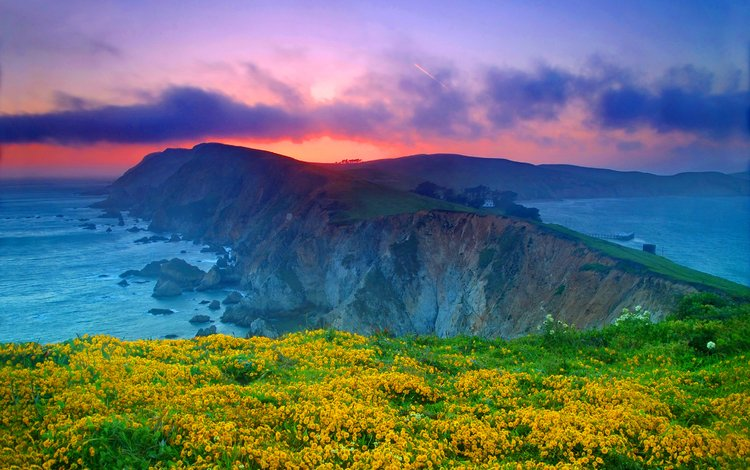 clouds, rocks, sunset, coast, the ocean, usa, ca, yellow flowers, point reyes national seashore, marin county