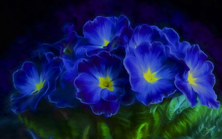 flowers, leaves, petals, blue, primula, violet, primrose
