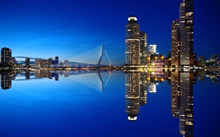 the sky, night, water, the city, skyscrapers, architecture, port, netherlands, holland, rotterdam