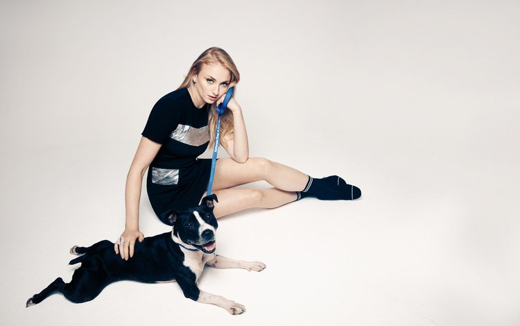 dress, pose, muzzle, look, dog, actress, sitting, sophie turner