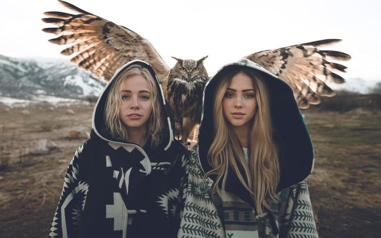 сова, zach allia, взгляд, крылья, девушки, птица, волосы, лицо, блондинки, owl, look, wings, girls, bird, hair, face, blonde
