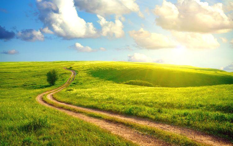 небо, дорога, трава, облака, солнце, пейзаж, поле, лето, the sky, road, grass, clouds, the sun, landscape, field, summer