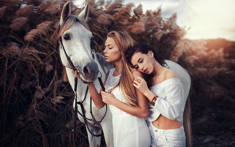 лошадь, van gorokhov, природа, взгляд, девушки, волосы, лицо, конь, модели, иван горохов, ivan gorokhov, horse, nature, look, girls, hair, face, model