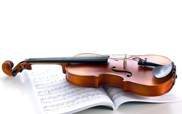 ноты, скрипка, музыка, струны, белый фон, музыкальный инструмент, notes, violin, music, strings, white background, musical instrument