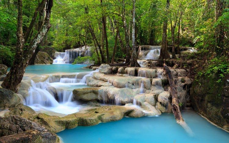 деревья, природа, лес, листья, пейзаж, водопад, trees, nature, forest, leaves, landscape, waterfall
