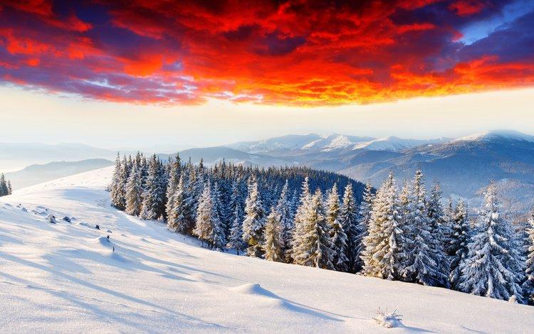 небо, горизонт, облака, елки, горы, зарево, снег, природа, лес, закат, зима, the sky, horizon, clouds, tree, mountains, glow, snow, nature, forest, sunset, winter