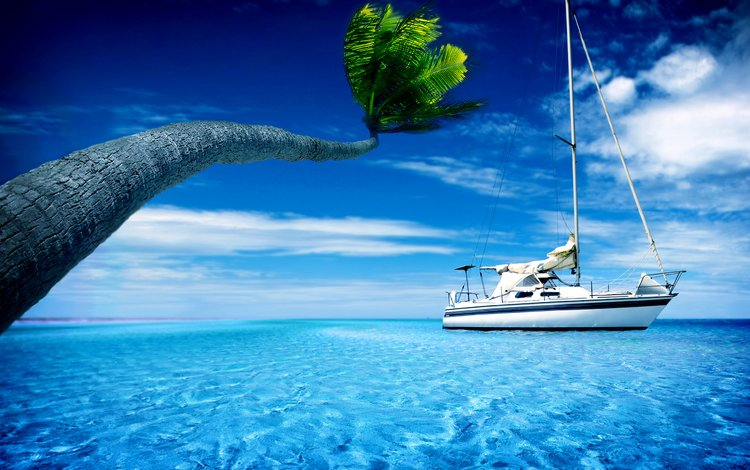 the sky, clouds, sea, beach, palma, yacht, tropics