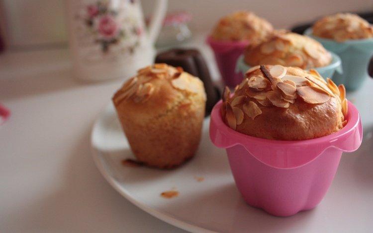 sweet, cakes, dessert, cupcakes