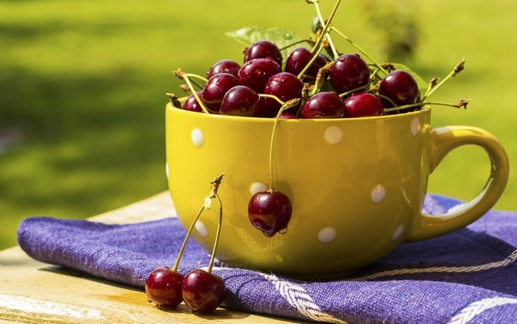 ягода, черешня, вишня, сочная, вкусная, berry, cherry, juicy, delicious