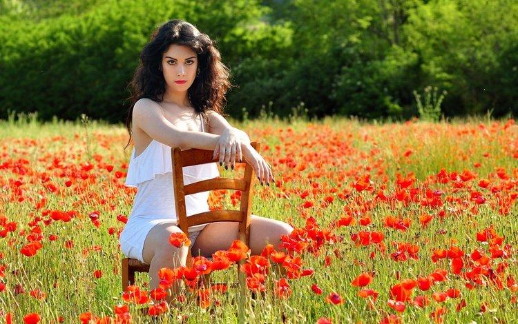 цветы, лицо, девушка, шатенка, поза, поле, взгляд, маки, стул, волосы, flowers, face, girl, brown hair, pose, field, look, maki, chair, hair