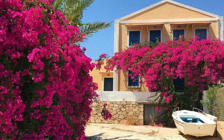 flowers, the sun, the bushes, garden, boat, house, greece, bougainvillea, kastelorizo
