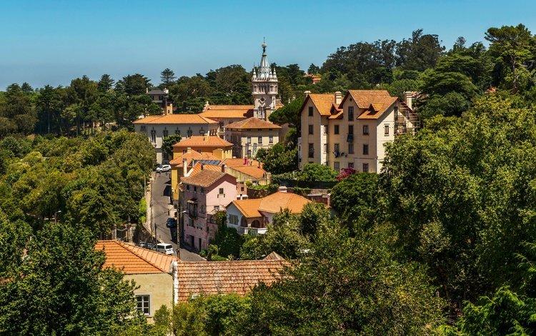 trees, the sun, greens, home, portugal, lisbon, sintra