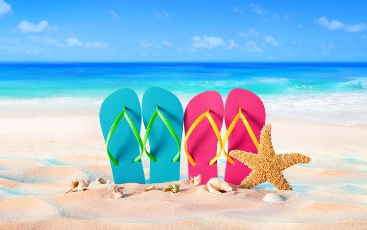sea, sand, beach, summer, shell, stay, starfish, vacation, slates