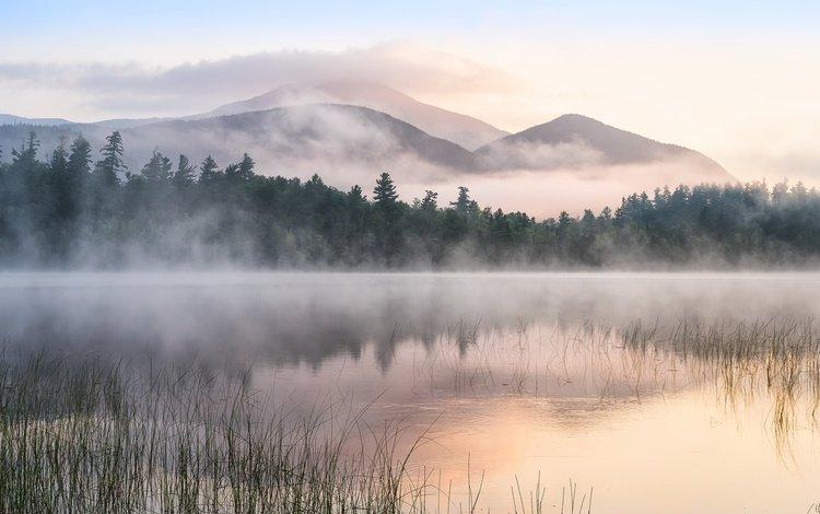 деревья, озеро, горы, утро, туман, trees, lake, mountains, morning, fog