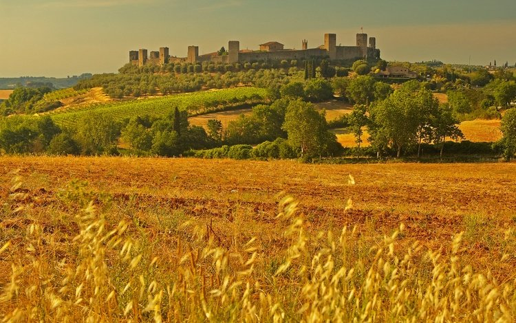 пейзаж, поле, стена, башня, италия, колоски, тоскана, монтериджони, landscape, field, wall, tower, italy, spikelets, tuscany, monteriggioni